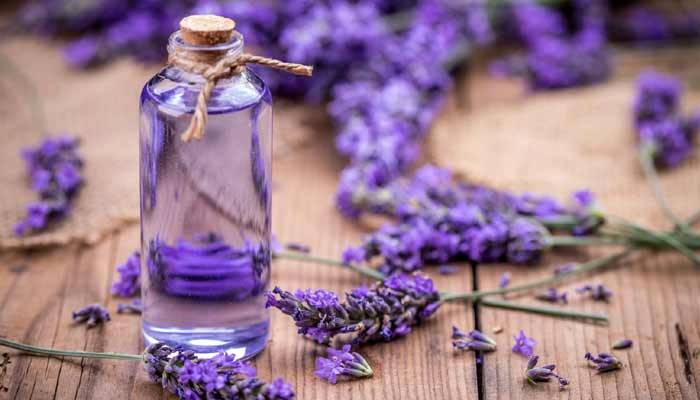Best Essential Oils For Work